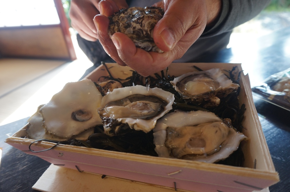Tarbouriech Oysters in Japan